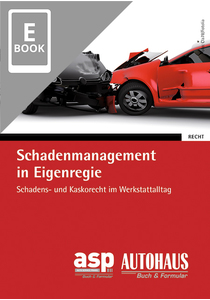 Schadenmanagement in Eigenregie (E-Book)